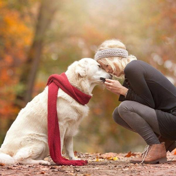 Ljubav između čoveka i ljubimca: Spasila sam sebe i svog psa ove noćne more (FOTO)